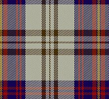 02050 Walker Dress Tartan Fabric Print Iphone Case by Detnecs2013