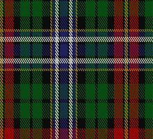 02066 Watt (Dunfermline) Tartan Fabric Print Iphone Case by Detnecs2013