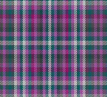 02076 Welly Commemorative Tartan Fabric Print Iphone Case by Detnecs2013