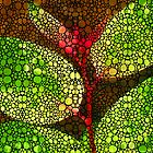 Five Leaves - Stone Rock'd Art By Sharon Cummings by Sharon Cummings