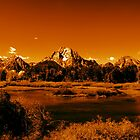 """Golden Landscape"" Grand Teton National Park  by aidan  moran"