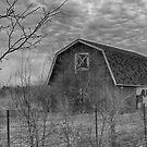 Old Barn by yellocoyote