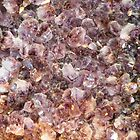 Amethyst Geode Up Close by 319media