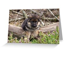 Puppy on a Log Greeting Card