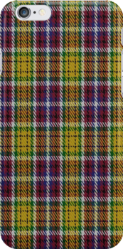 02105 City of Williams Lake District Tartan Fabric Print Iphone Case by Detnecs2013