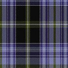 02109 Willox Tartan Fabric Print Iphone Case by Detnecs2013