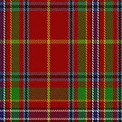 02136 Wren Clan/Family Tartan Fabric Print Iphone Case by Detnecs2013