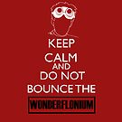 Do not bounce the wonderflonium by RebeccaMcGoran