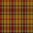 02150 City of Victoria, British Columbia District Tartan Fabric Print Iphone Case by Detnecs2013