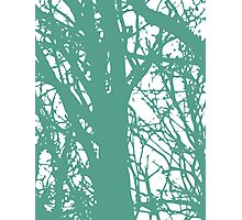 Blue and Green World Photographic Print