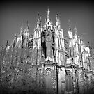 The many spires of Cologne Dome. by Lilian Marshall