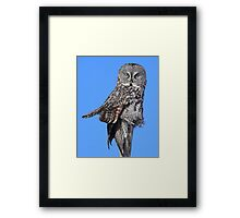 Totem of the great grey Framed Print