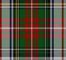 02151 Victoria Highland Dress #2 Artefact Tartan Fabric Print Iphone Case by Detnecs2013