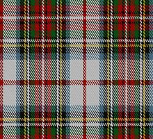 02154 Victoria (Wilsons) Royal Tartan Fabric Print Iphone Case by Detnecs2013