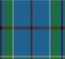 02162 Vance Tartan Fabric Print Iphone Case by Detnecs2013