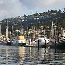 Sausalito by David Denny