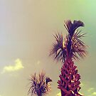 Sky Palm Tree by jevep