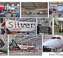 Silver Airways Photo Collage 1 by Diane E. Berry