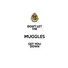Don't Let The Muggles Get You Down iPhone Case by sonicsandwands
