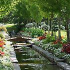 Dream garden by Denis Charbonnier