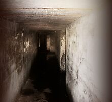 Battery Mishler corridor into the darkness by Dawna Morton