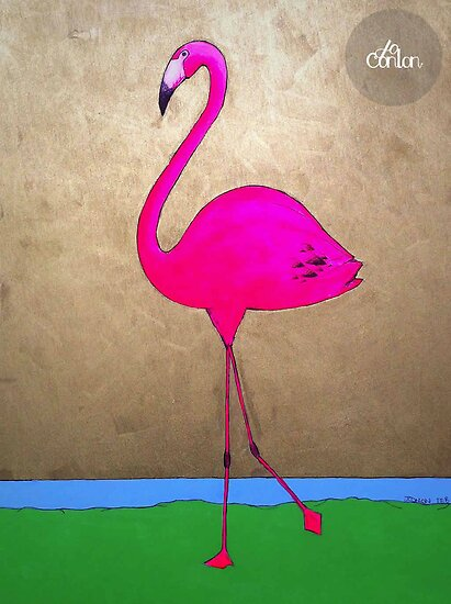 Flamingo by Jo Conlon