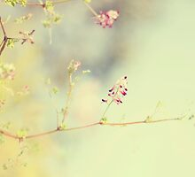 soft scent of spring by Ingz