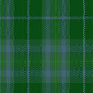 02166 Valley of the Green #1 Fashion Tartan Fabric Print Iphone Case by Detnecs2013