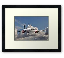 Silver Flying 2 Painted Framed Print