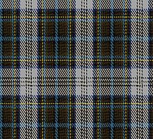 02196 Royal Stewheart, (Unidentified #18) Tartan Fabric Print Iphone Case by Detnecs2013