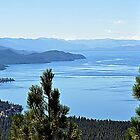 &quot; East Shore ~ Lake Tahoe Nevada&quot; by Lynn Bawden