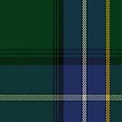 02208 Sandlewant Greens, (Unidentified #30) Artefact Tartan Fabric Print Iphone Case by Detnecs2013