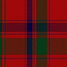 02212 Big Red Matter, (Unidentified #34) Tartan Fabric Print Iphone Case by Detnecs2013