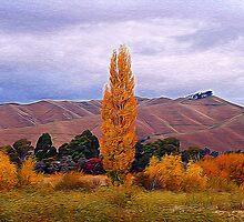 Marlborough, Wither Hills by Heike Richter