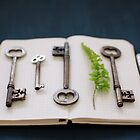 keys by Sue Hammond