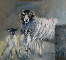 Swaledale Wall by Sue Nichol