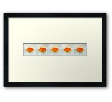 Daffodil Kisses... Framed Print