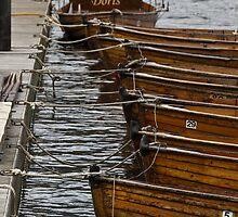 Doris, Lake Windemere by LamCatPhoto