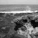 Hawaii in Black &amp; White by Timothy L. Gernert