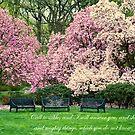 Garden Benches in Spring by KellyHeaton