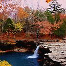 Autumn Sundown,  Falling Water Falls by NatureGreeting Cards ©ccwri