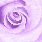 Water Colored Memory ~ Purple Rose by SummerJade