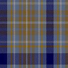 02225 Child's Play, (Unidentified #47) Tartan Fabric Print Iphone Case by Detnecs2013