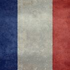 The National Flag of France by Bruiserstang