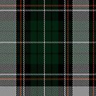 02227 Potato Supper, (Unidentified #49) Tartan Fabric Print Iphone Case by Detnecs2013