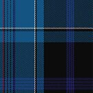 02246 Miss Patterson (Unidentified) Artefact Tartan Fabric Print Iphone Case by Detnecs2013