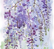 The Wisteria's scent by Maree Clarkson