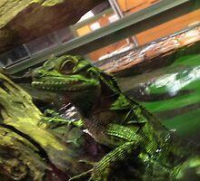 The lizard t-shirt by Velociraptor40