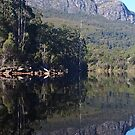 Lake Rosebury, Tasmania. by Esther's Art and Photography