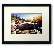 picture book fall II Framed Print